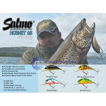 Umpan Sinking Salmo Hornet